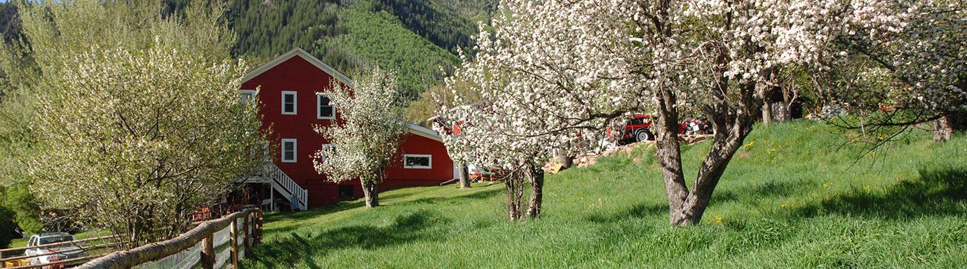 Avalanche Ranch