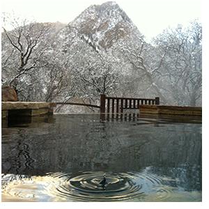 pool-circles3